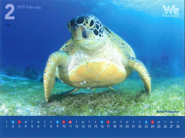 第三弾◆◇2019年卓上カレンダー企画◇◆~フィリピン・ボホール~