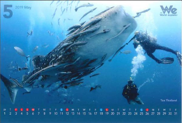 第六弾◆◇2019年卓上カレンダー企画◇◆~タイ・タオ島~