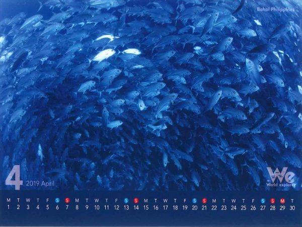 第五弾◆◇2019年卓上カレンダー企画◇◆~フィリピン・ボホール~