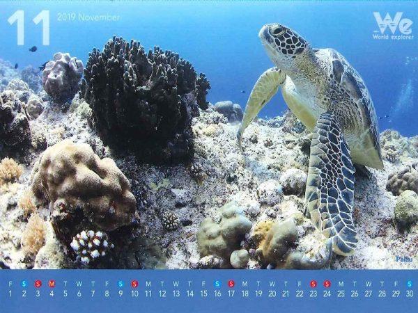 第十二弾◆◇2019年卓上カレンダー企画◇◆~パラオ~